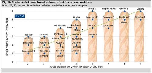 Fig. 3: Crude protein and bread volume of winter wheat varieties