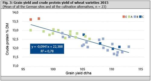 Fig. 3: Grain yield and crude protein yield of wheat varieties 2015